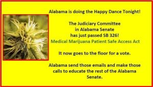 AlabamaMedicalMarijuanaPatientSafeAccessActPassesSenateJudiciaryCommittee[KathyDay]