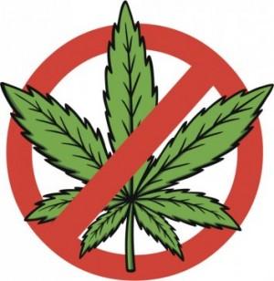 NoMarijuana