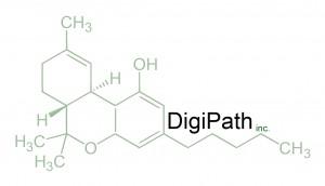 DigiPathInc(molecular-logo)