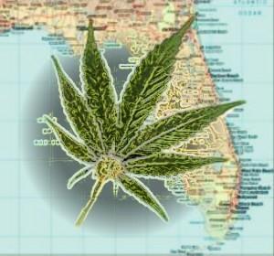 FloridaMarijuana