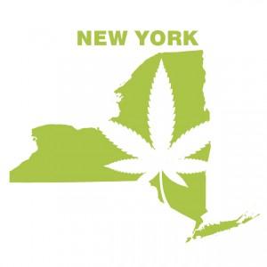NewYorkMarijuana[HeraldTribune]