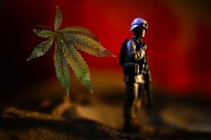 VeteransMarijuana[E.JasonWambsgans-MikeMiner-ChicagoTribune].jpg