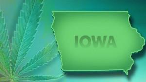 Iowa Cannabis