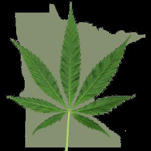 MinnesotaWithCannabisLeaf